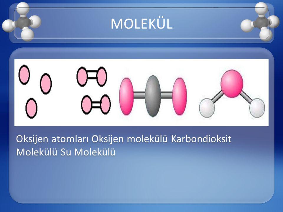 MOLEKÜL Oksijen atomları Oksijen molekülü Karbondioksit Molekülü Su Molekülü
