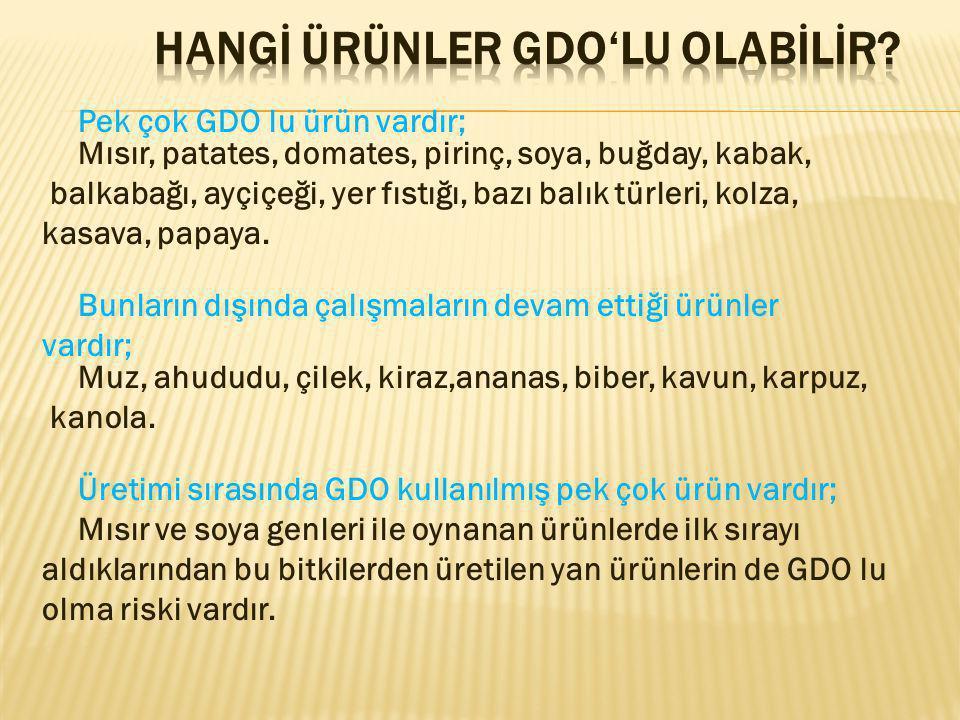 HANGİ ÜRÜNLER GDO'LU OLABİLİR