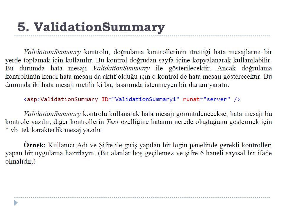 5. ValidationSummary