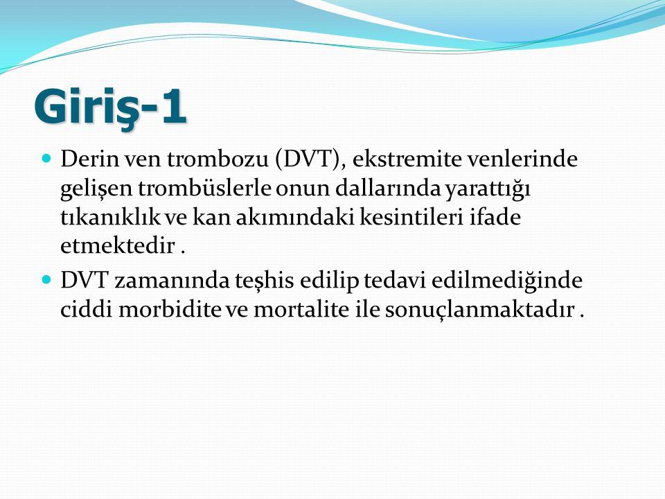 Giriş-1