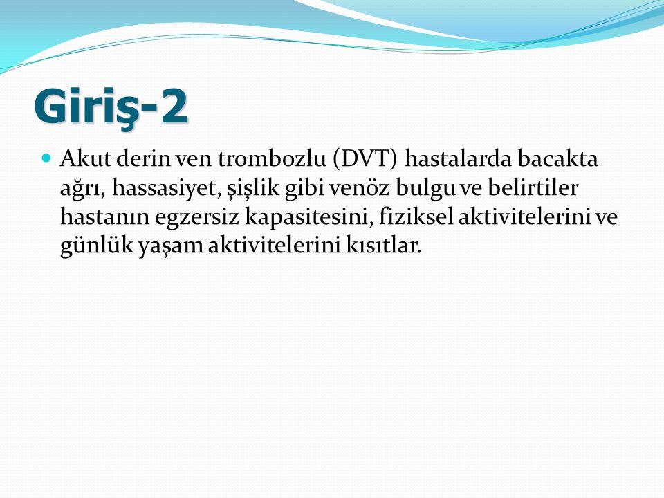 Giriş-2