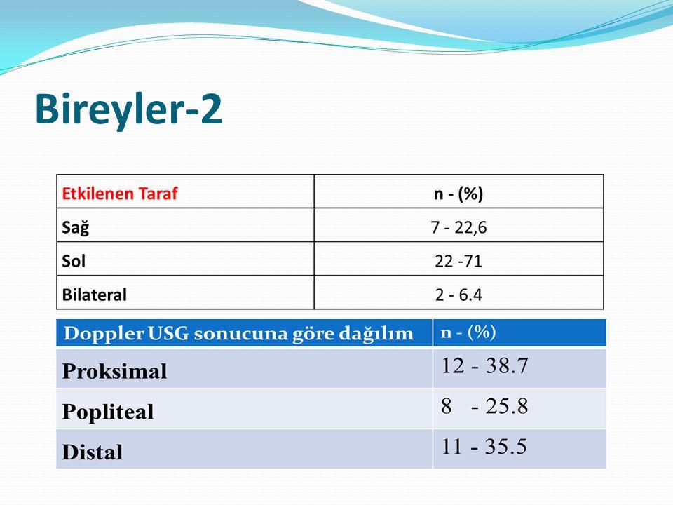 Bireyler-2