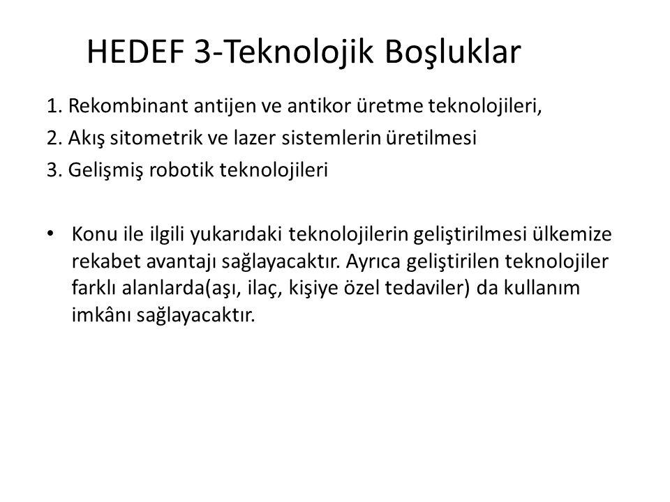 HEDEF 3-Teknolojik Boşluklar