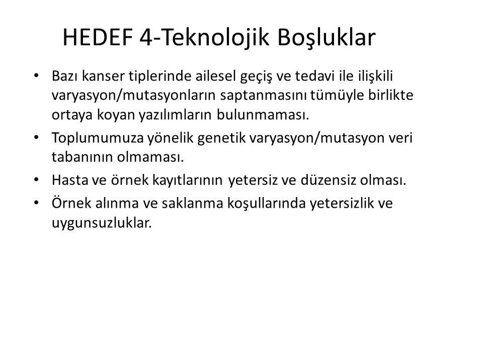 HEDEF 4-Teknolojik Boşluklar