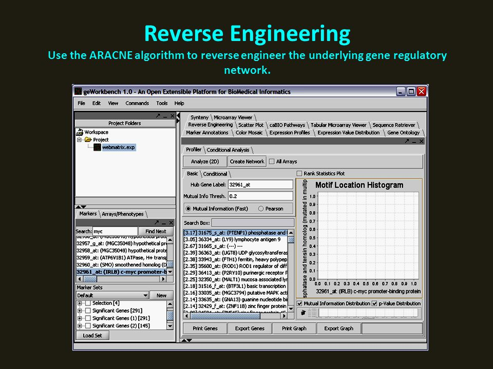 Reverse Engineering Use the ARACNE algorithm to reverse engineer the underlying gene regulatory network.
