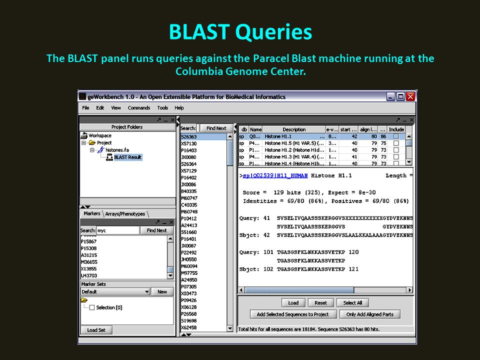 BLAST Queries The BLAST panel runs queries against the Paracel Blast machine running at the Columbia Genome Center.