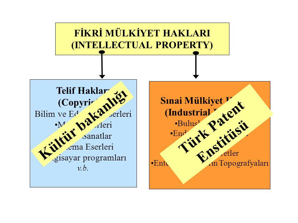 Kültür bakanlığı Türk Patent Enstitüsü