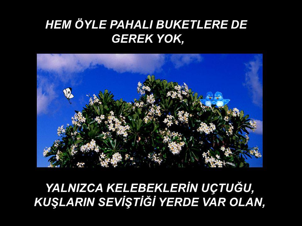 HEM ÖYLE PAHALI BUKETLERE DE GEREK YOK,