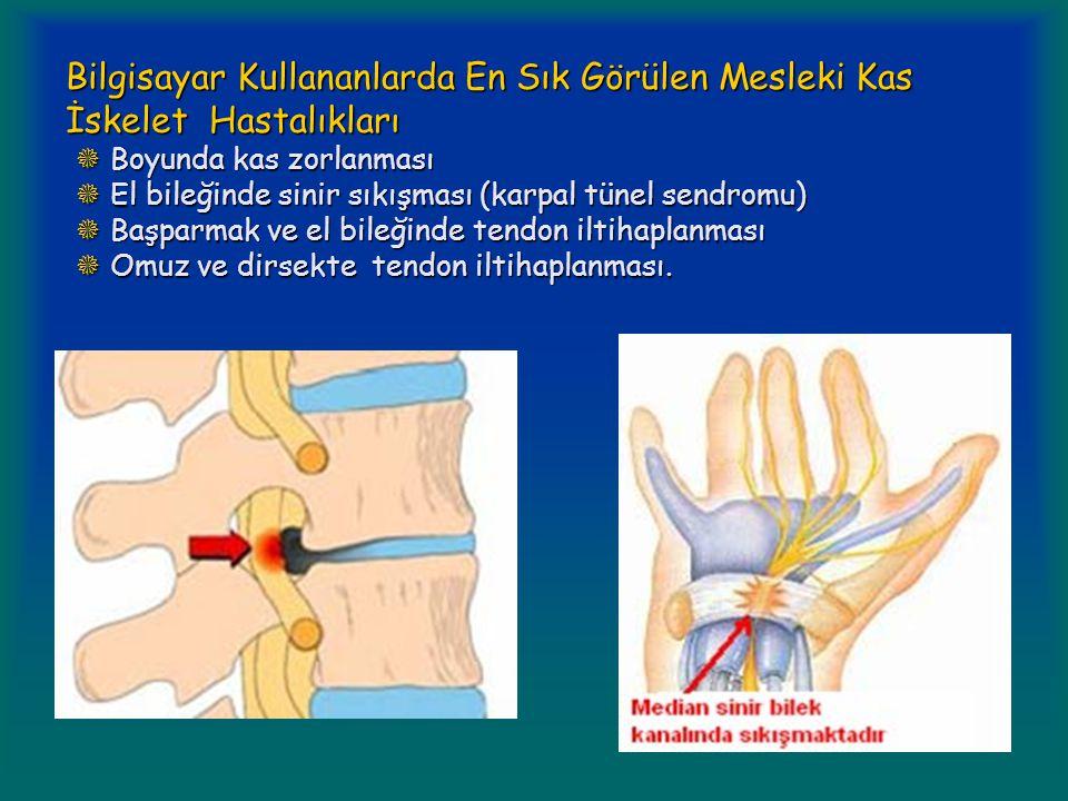 Bilgisayar Kullananlarda En Sık Görülen Mesleki Kas İskelet Hastalıkları  Boyunda kas zorlanması  El bileğinde sinir sıkışması (karpal tünel sendromu)  Başparmak ve el bileğinde tendon iltihaplanması  Omuz ve dirsekte tendon iltihaplanması.