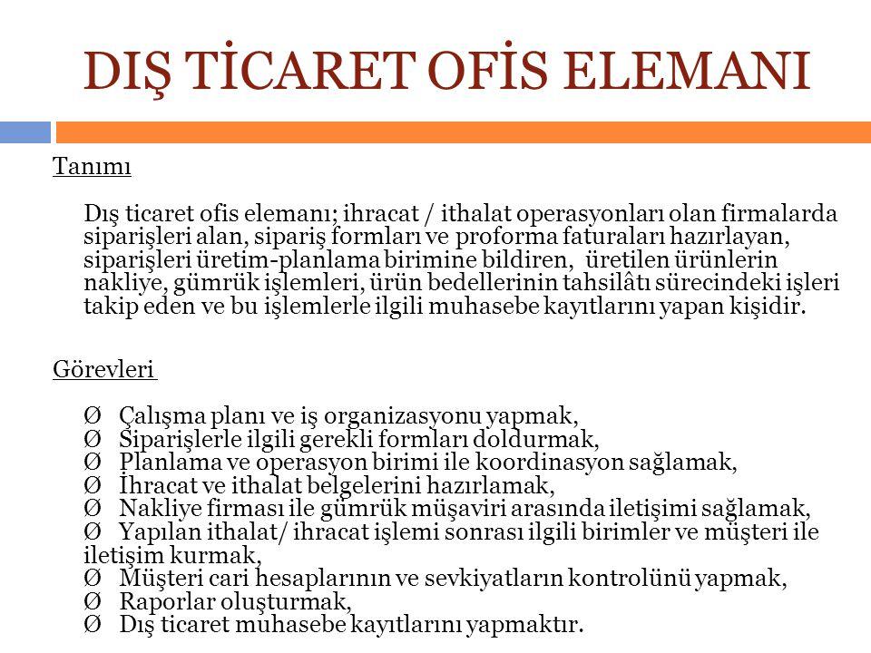 DIŞ TİCARET OFİS ELEMANI