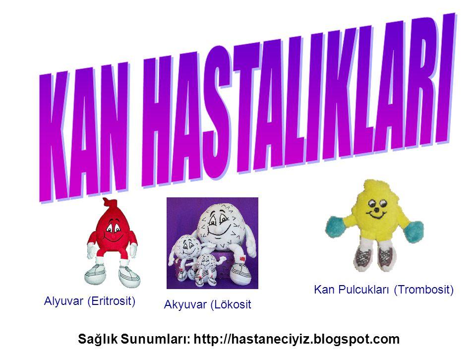 KAN HASTALIKLARI Sağlık Sunumları: http://hastaneciyiz.blogspot.com