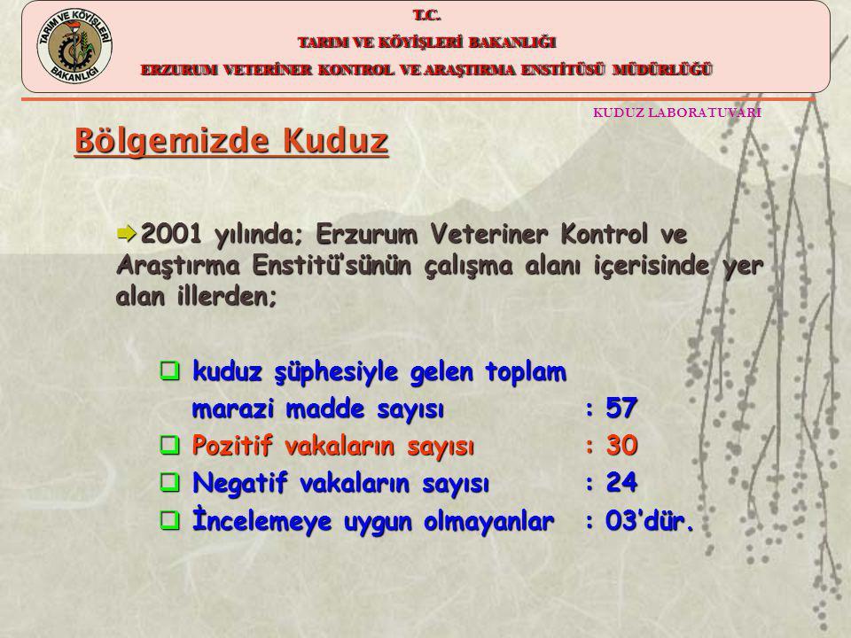 Bölgemizde Kuduz 2001 yılında; Erzurum Veteriner Kontrol ve Araştırma Enstitü'sünün çalışma alanı içerisinde yer alan illerden;
