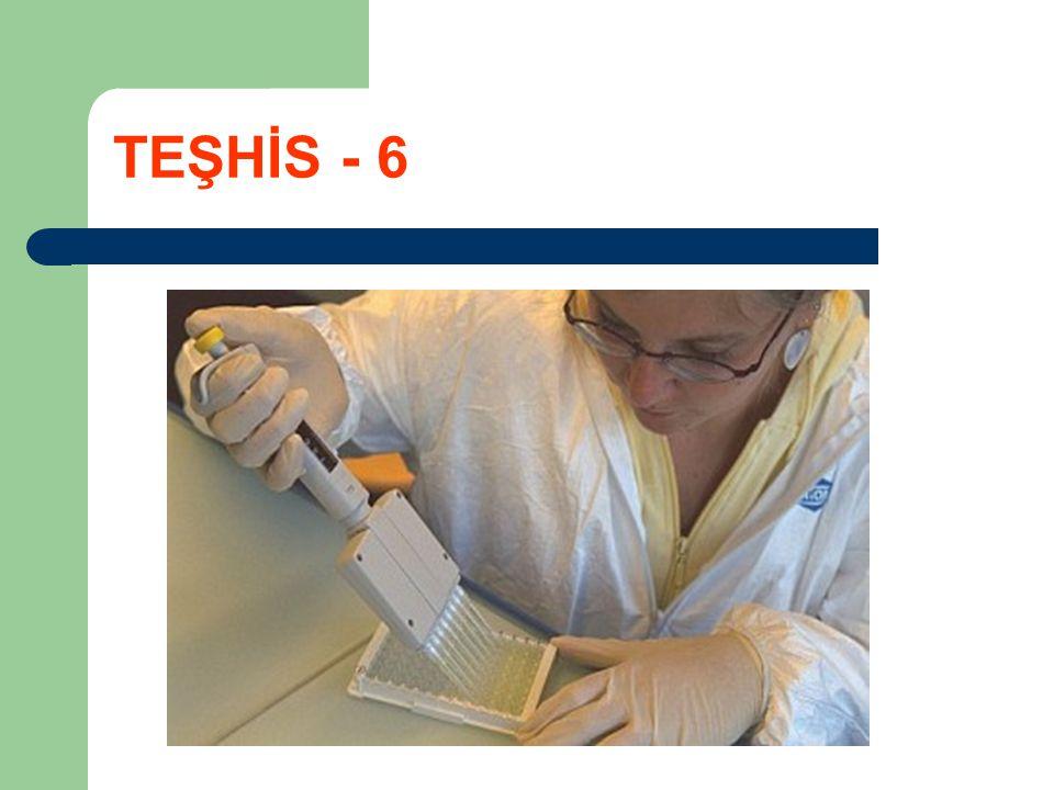 TEŞHİS - 6