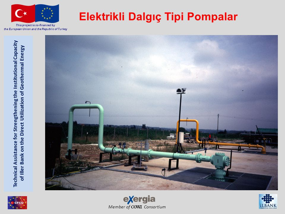 Elektrikli Dalgıç Tipi Pompalar