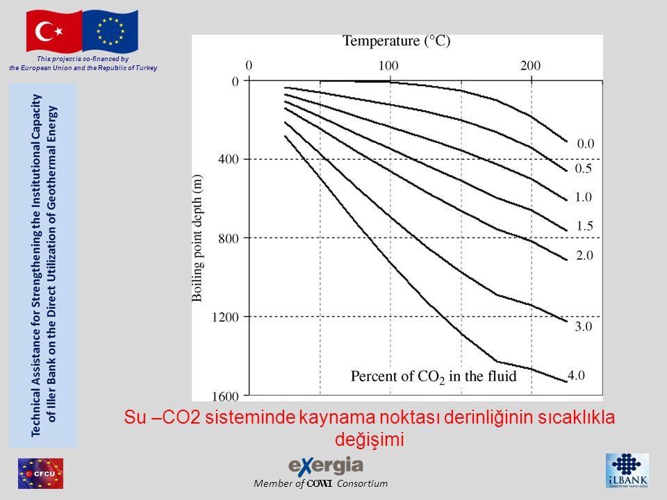 Su –CO2 sisteminde kaynama noktası derinliğinin sıcaklıkla değişimi