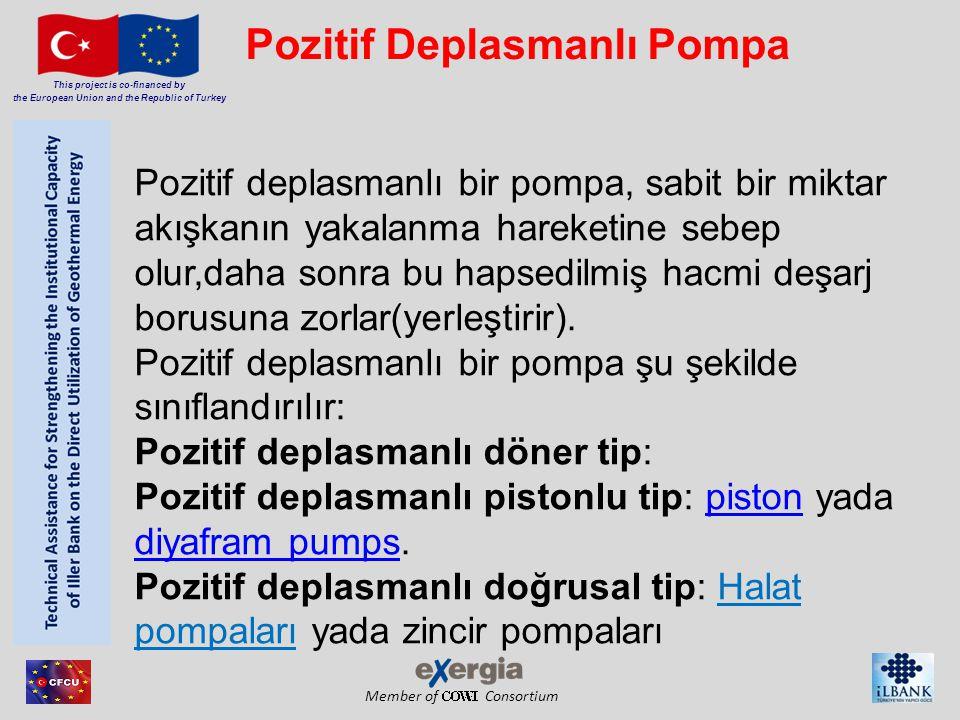 Pozitif Deplasmanlı Pompa