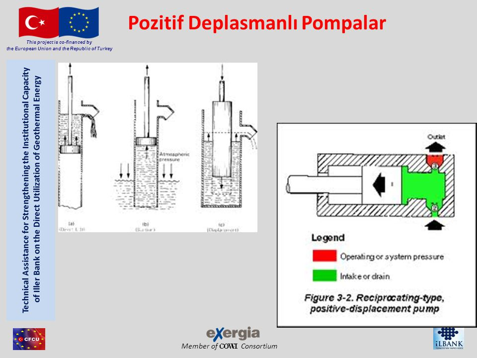 Pozitif Deplasmanlı Pompalar