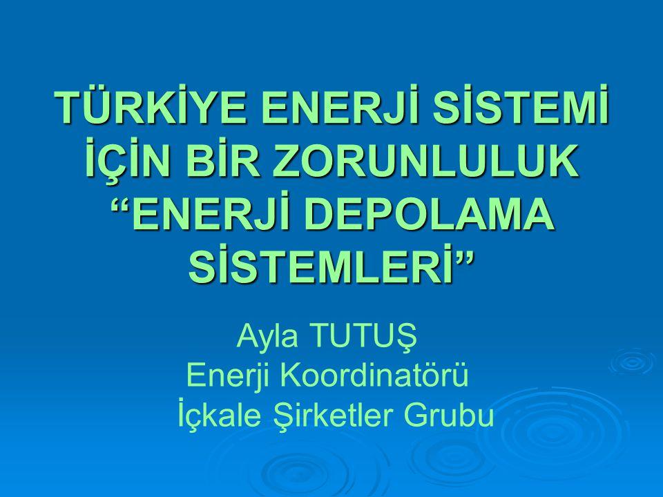 TÜRKİYE ENERJİ SİSTEMİ İÇİN BİR ZORUNLULUK ENERJİ DEPOLAMA SİSTEMLERİ