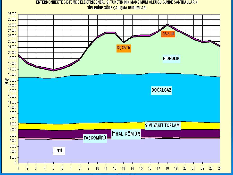Türkiye elektrik şebekesinin günlük yük eğrisinde iki tepe noktası (puant) oluşmaktadır. Bunlar sabah puantı ve akşam puantıdır. 2005 yılında en yüksek akşam puantı 25 000 MW olmuştur. Türkiye sistemi saatlik yük eğrisinde sabah puantı 900-1300 saatleri arasındadır. Akşam puantı ise genellikle saat 1600' da artışa geçmekte 1800 civarında maksimum seviyeye ulaşmakta, daha sonra giderek düşmektedir. En yüksek güç çekilmesi 1700-2200 saatleri arasındadır. Bu durum sonuçta çok zamanlı (puant) elektrik satış tarifeleri uygulamasını gündeme getirmiş, sistem yük eğrisindeki tepe noktalarının günün diğer saatlerine kaydırılmasına çalışılmıştır. En pahalı elektrik üretimi bu saatler arasında oluşmaktadır.