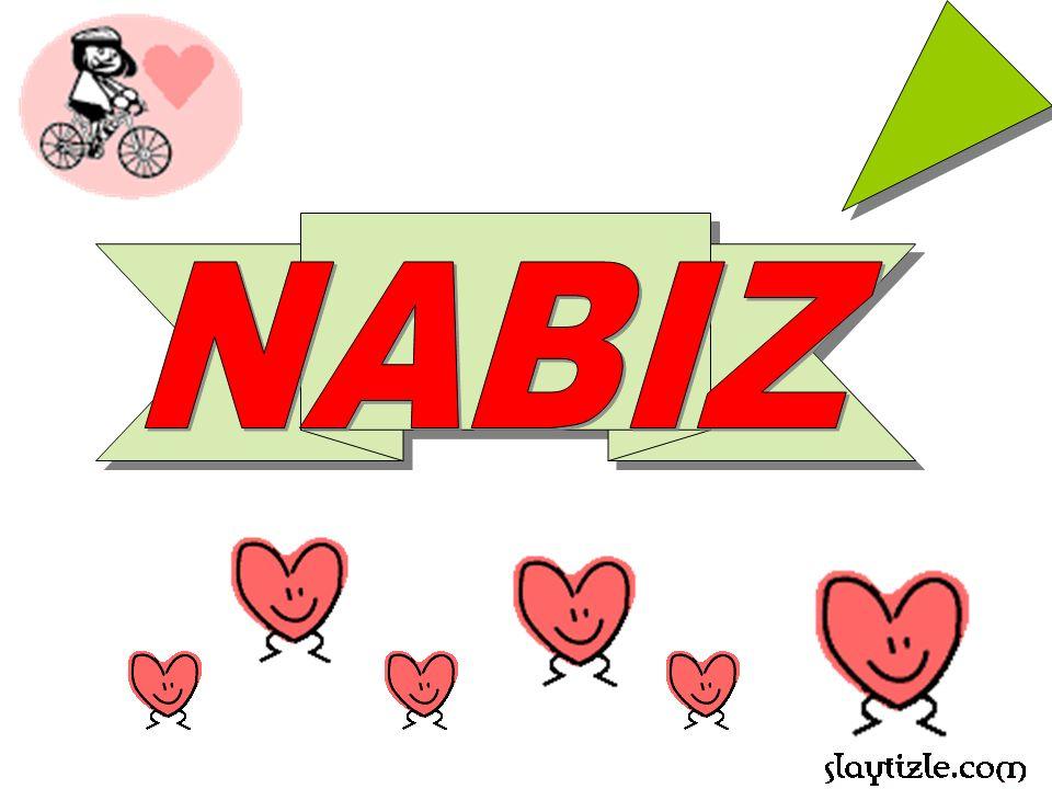 NABIZ