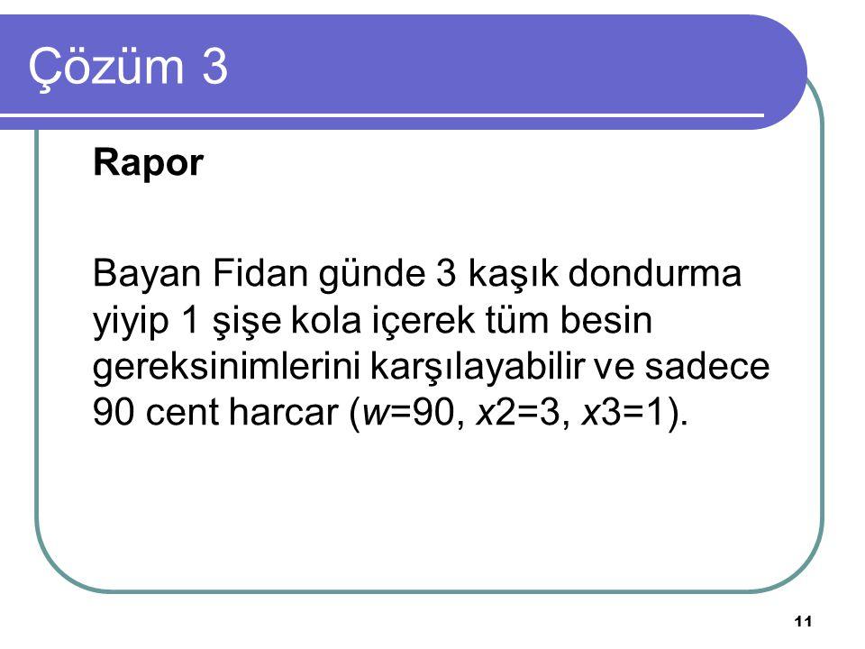 Çözüm 3 Rapor.