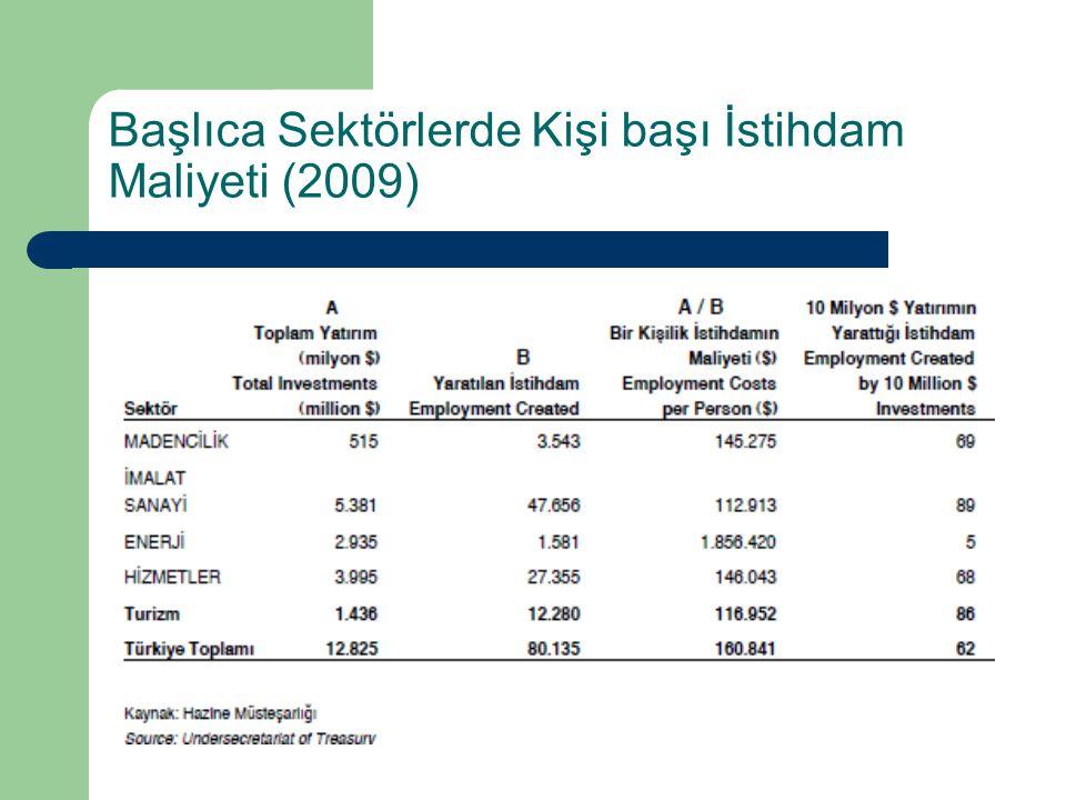 Başlıca Sektörlerde Kişi başı İstihdam Maliyeti (2009)