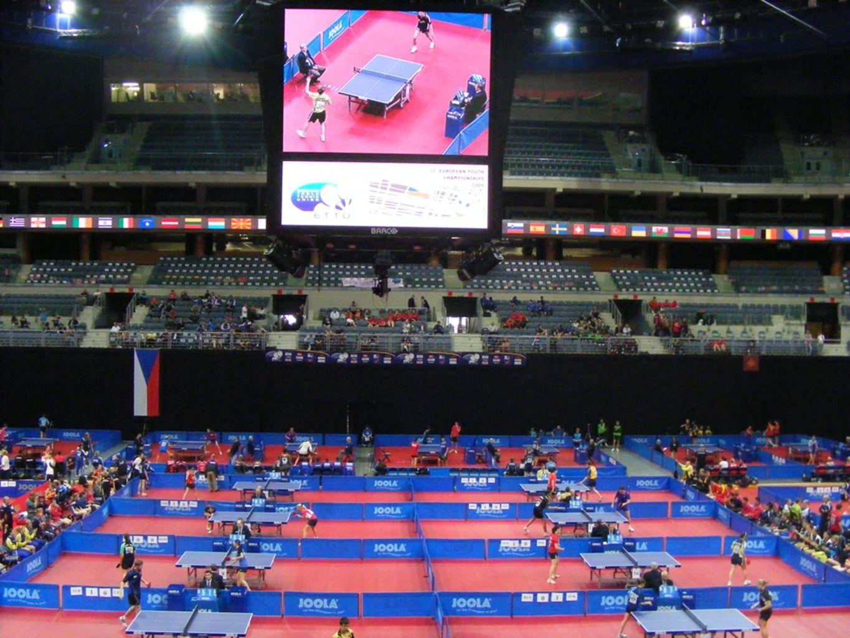 Avrupa Şampiyonaları Büyükler Takım ve Ferdi Avrupa Şampiyonaları;