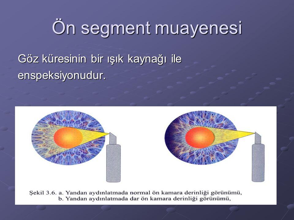 Ön segment muayenesi Göz küresinin bir ışık kaynağı ile