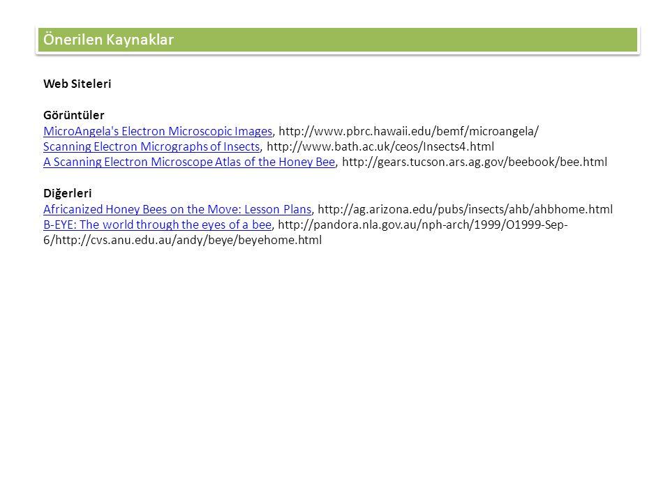 Önerilen Kaynaklar Web Siteleri Görüntüler
