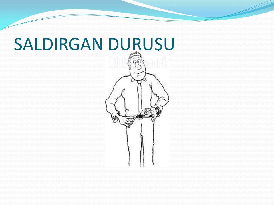 SALDIRGAN DURUŞU