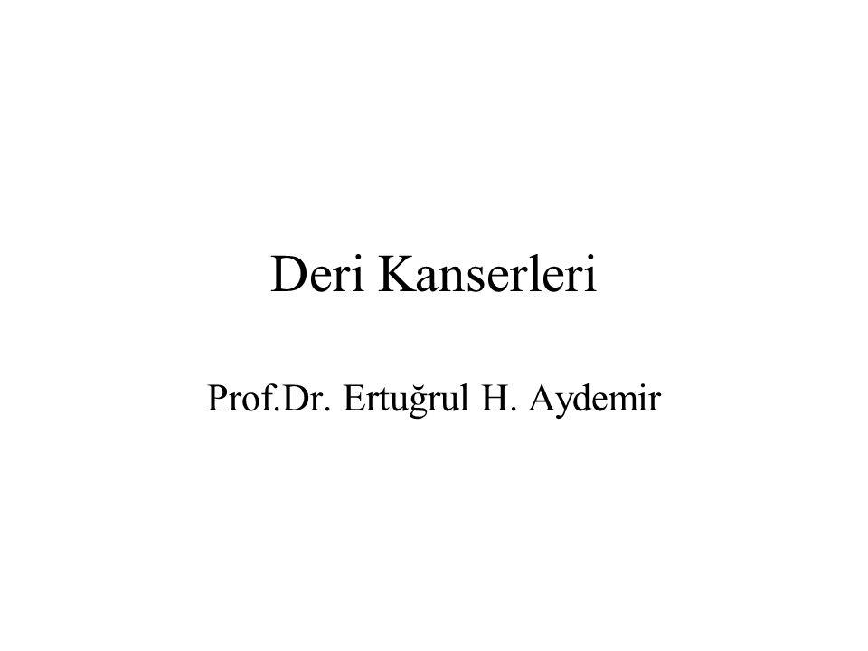 Prof.Dr. Ertuğrul H. Aydemir