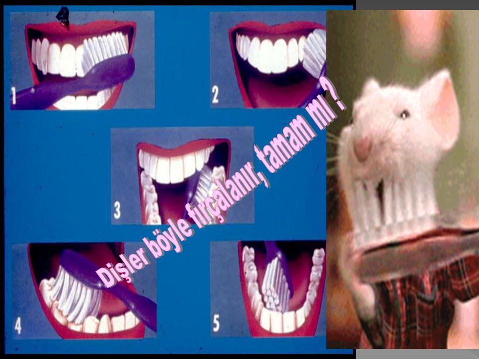 Dişler böyle fırçalanır, tamam mı