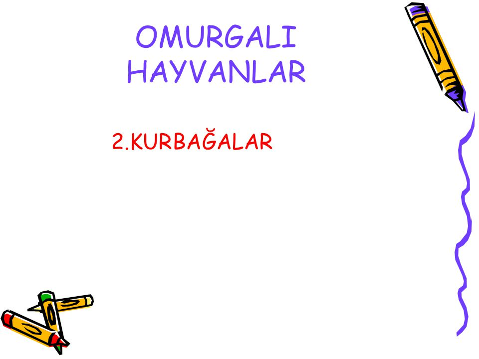 OMURGALI HAYVANLAR 2.KURBAĞALAR