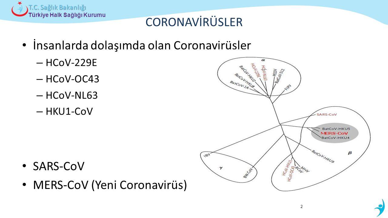 İnsanlarda dolaşımda olan Coronavirüsler