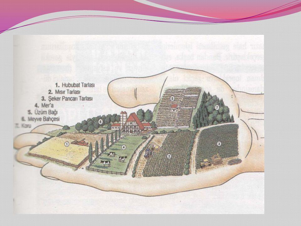 Kamulaştırma Amaçlı Arazi Toplulaştırma nedir