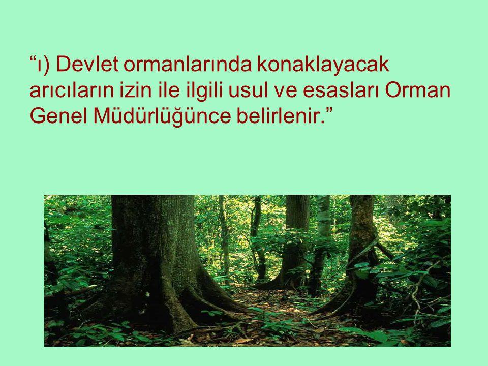ı) Devlet ormanlarında konaklayacak arıcıların izin ile ilgili usul ve esasları Orman Genel Müdürlüğünce belirlenir.