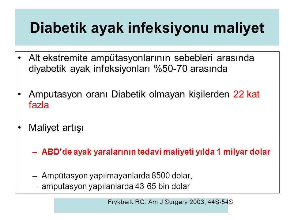 Diabetik ayak infeksiyonu maliyet