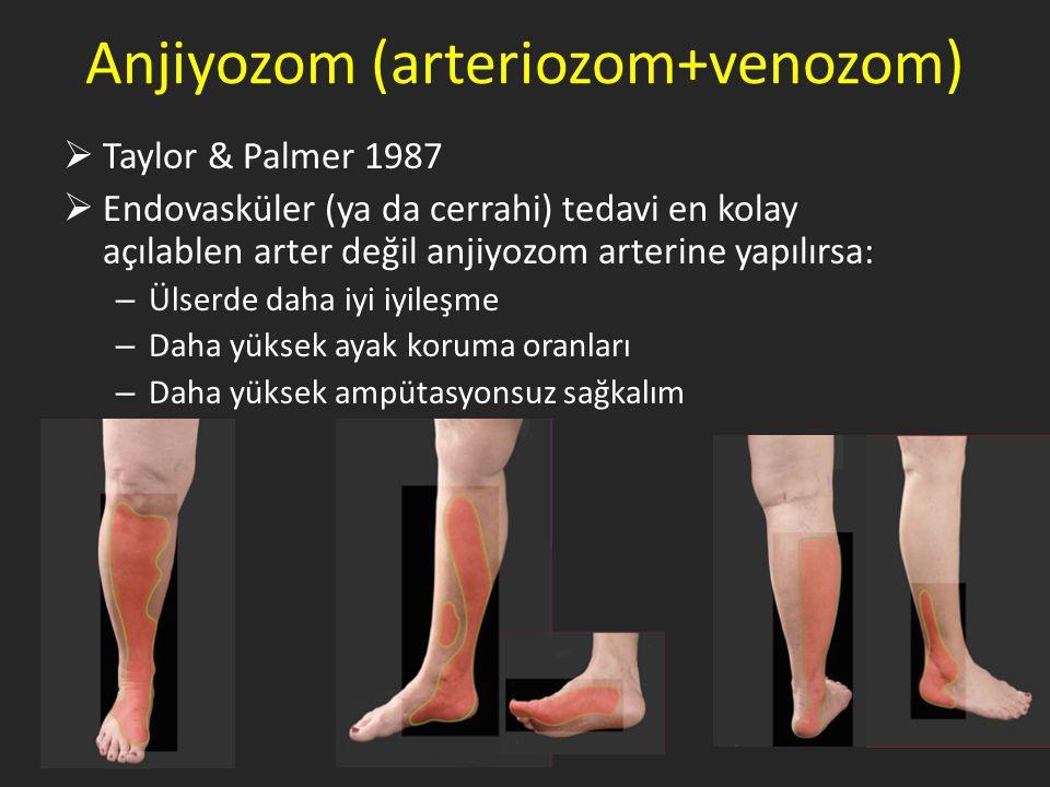 Anjiyozom (arteriozom+venozom)