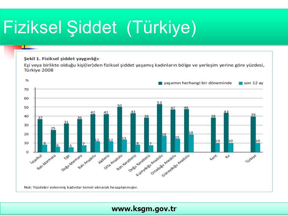 Fiziksel Şiddet (Türkiye)