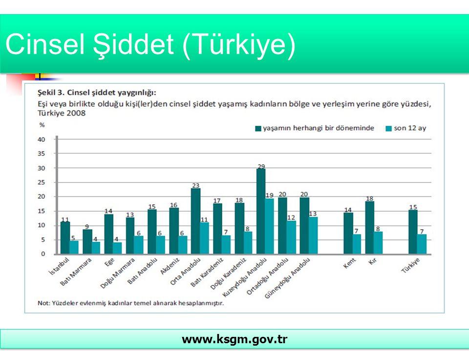 Cinsel Şiddet (Türkiye)