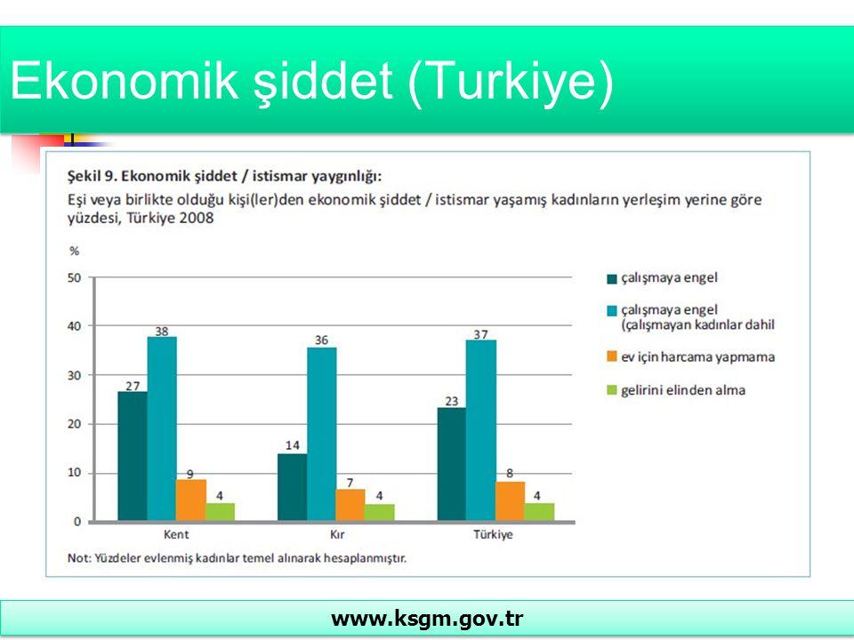 Ekonomik şiddet (Turkiye)