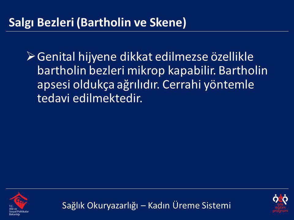 Salgı Bezleri (Bartholin ve Skene)