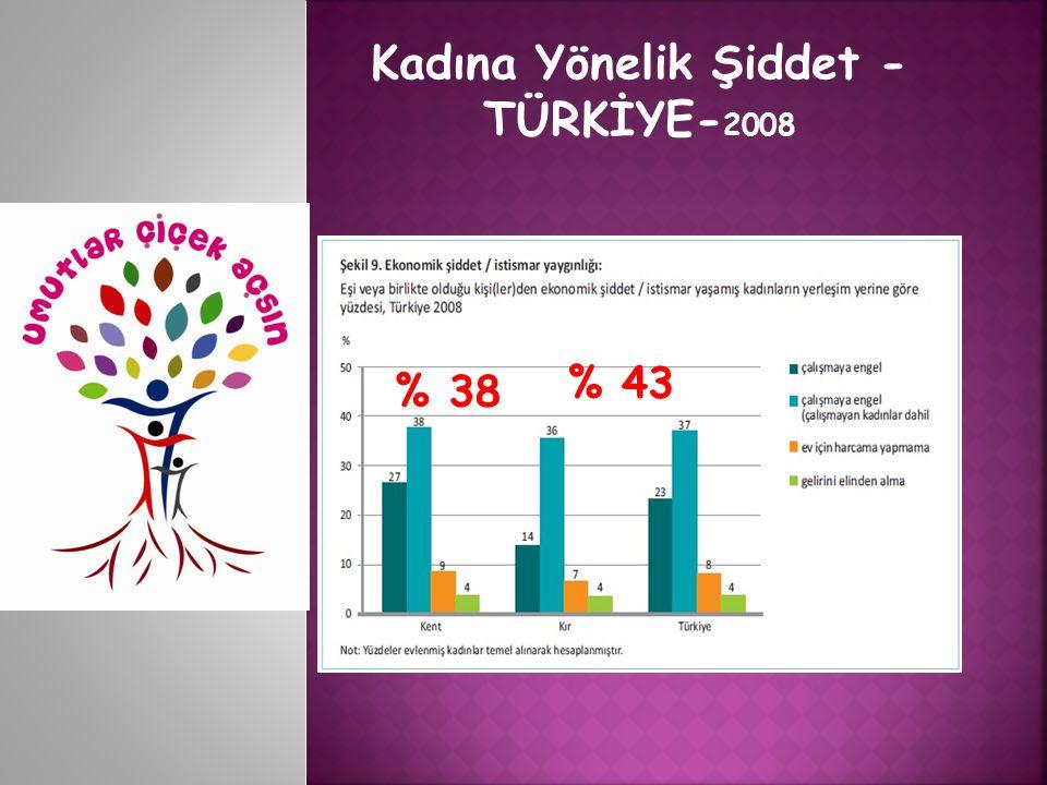 Kadına Yönelik Şiddet - TÜRKİYE-2008