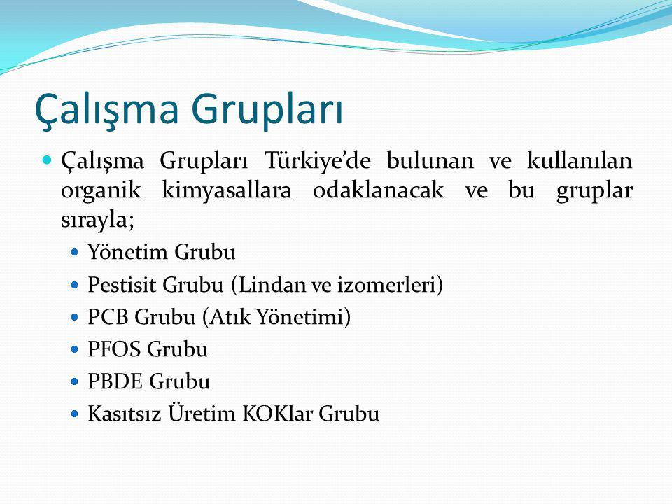 Çalışma Grupları Çalışma Grupları Türkiye'de bulunan ve kullanılan organik kimyasallara odaklanacak ve bu gruplar sırayla;