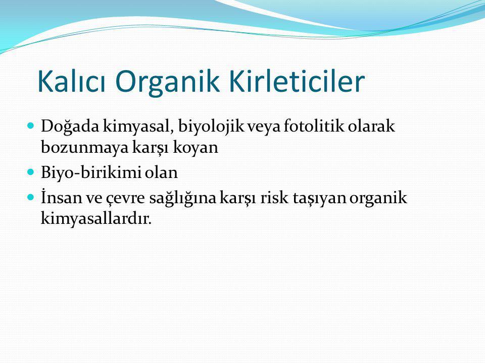 Kalıcı Organik Kirleticiler