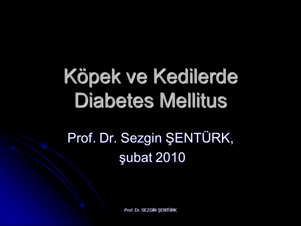 Köpek ve Kedilerde Diabetes Mellitus