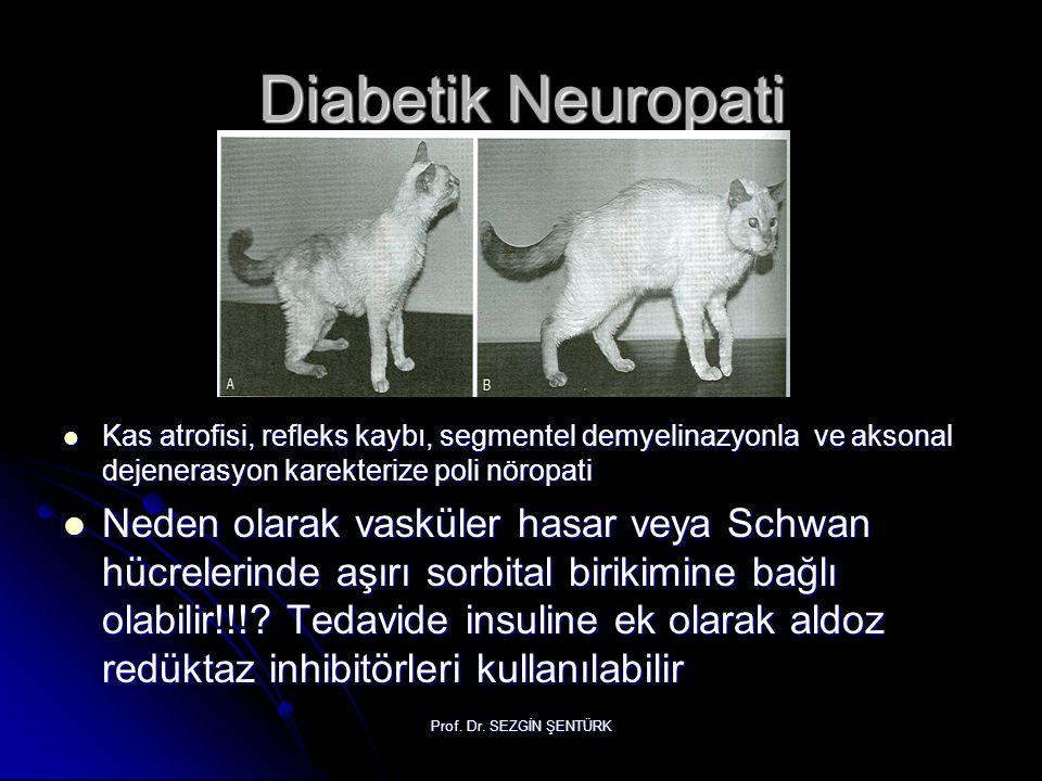 Diabetik Neuropati Kas atrofisi, refleks kaybı, segmentel demyelinazyonla ve aksonal dejenerasyon karekterize poli nöropati.