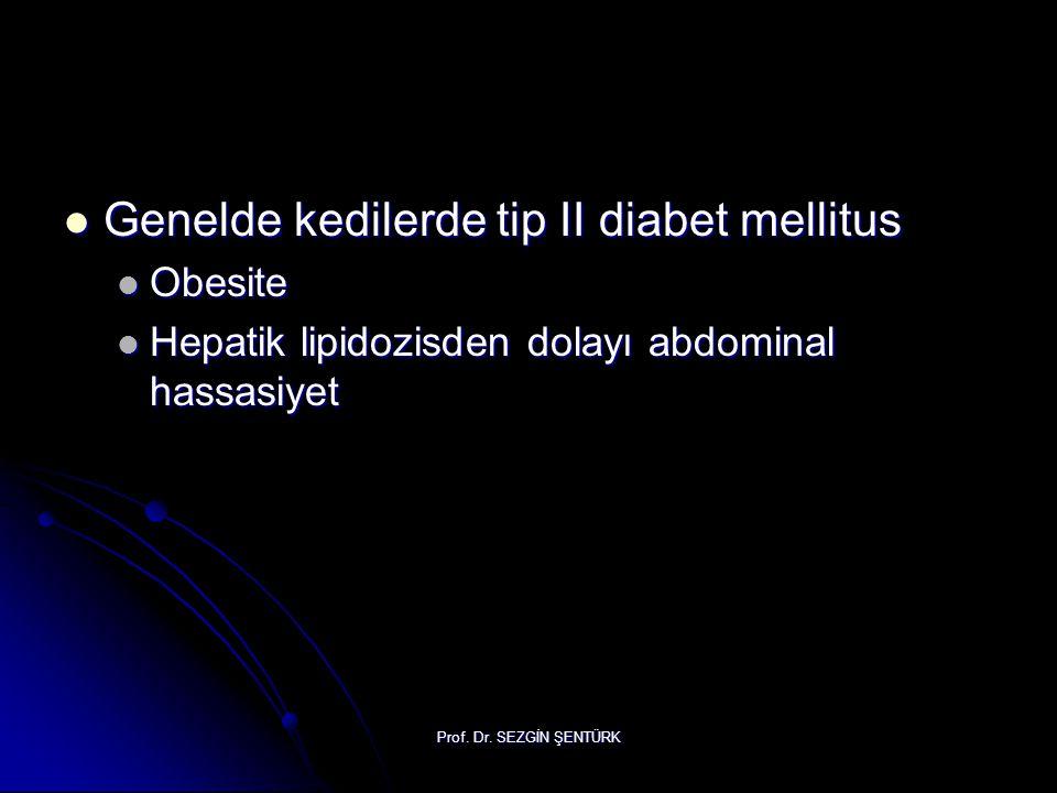 Genelde kedilerde tip II diabet mellitus