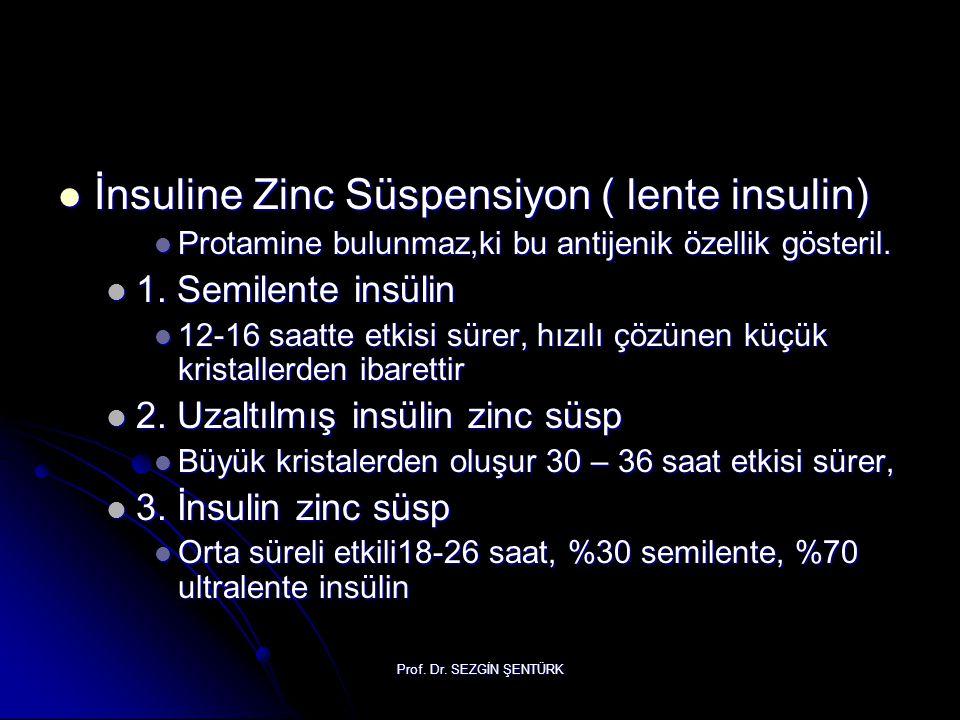 İnsuline Zinc Süspensiyon ( lente insulin)
