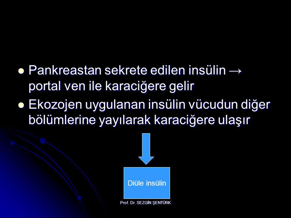Pankreastan sekrete edilen insülin → portal ven ile karaciğere gelir